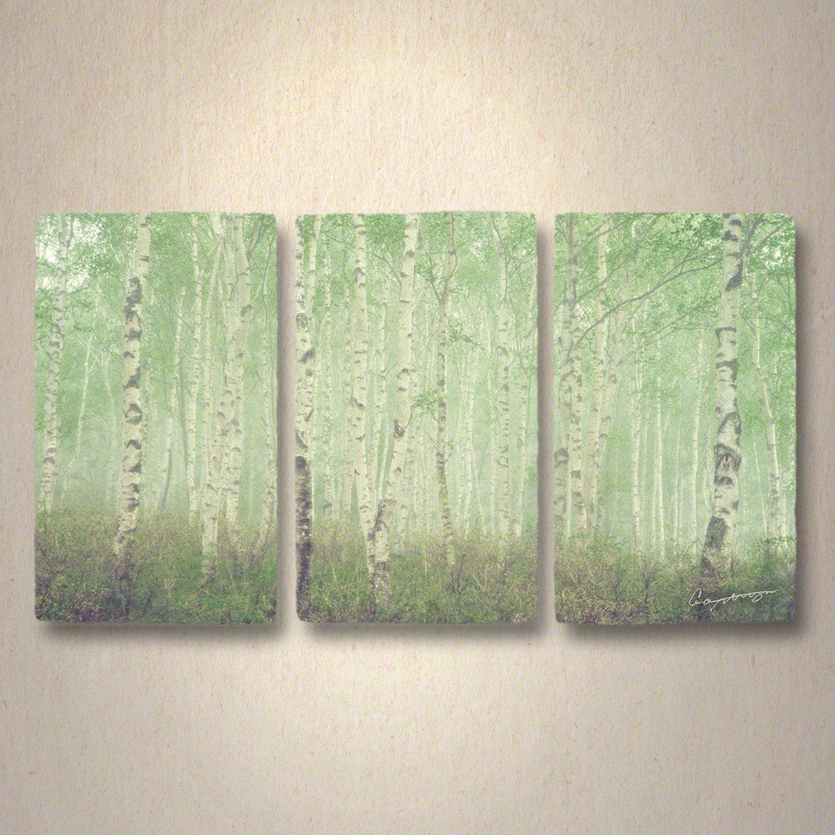 和紙 アートパネル 3枚 続き 「霧の中の新緑の白樺林」 (80x45cm) 絵 絵画 壁掛け 壁飾り インテリア アート B07347ZMR4 33.アートパネル3枚続き(長辺80cm) 48000円 霧の中の新緑の白樺林 霧の中の新緑の白樺林 33.アートパネル3枚続き(長辺80cm) 48000円