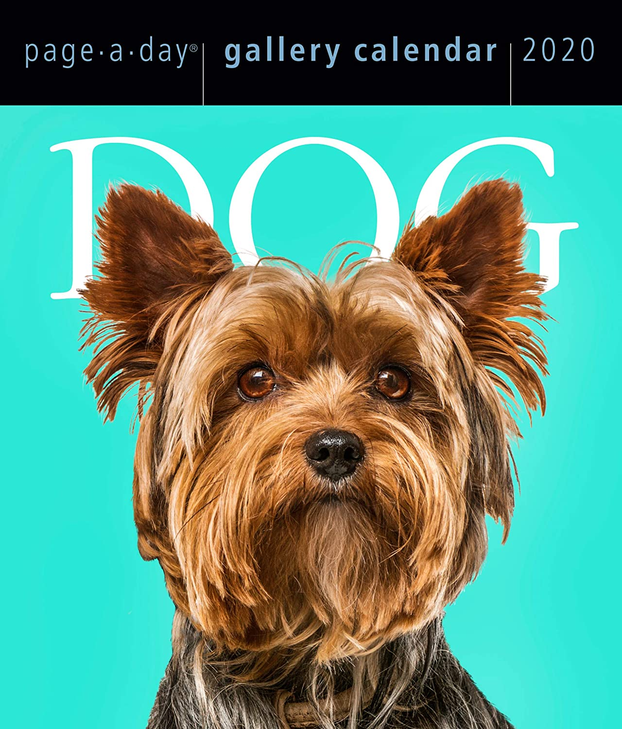 Dog Page-A-Day Gallery Calendar 2020 [6.25