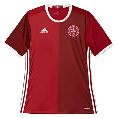 009ddb7a4 Amazon.com  adidas Men s Soccer Denmark Home Player Jersey  Sports ...