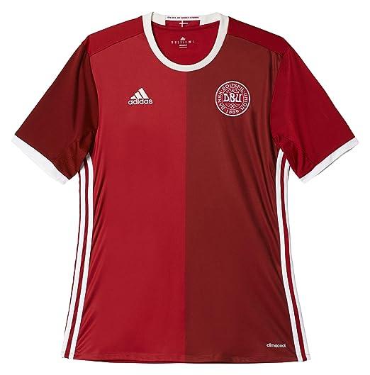 90874349b Amazon.com: adidas Men's Soccer Denmark Home Player Jersey: Sports ...