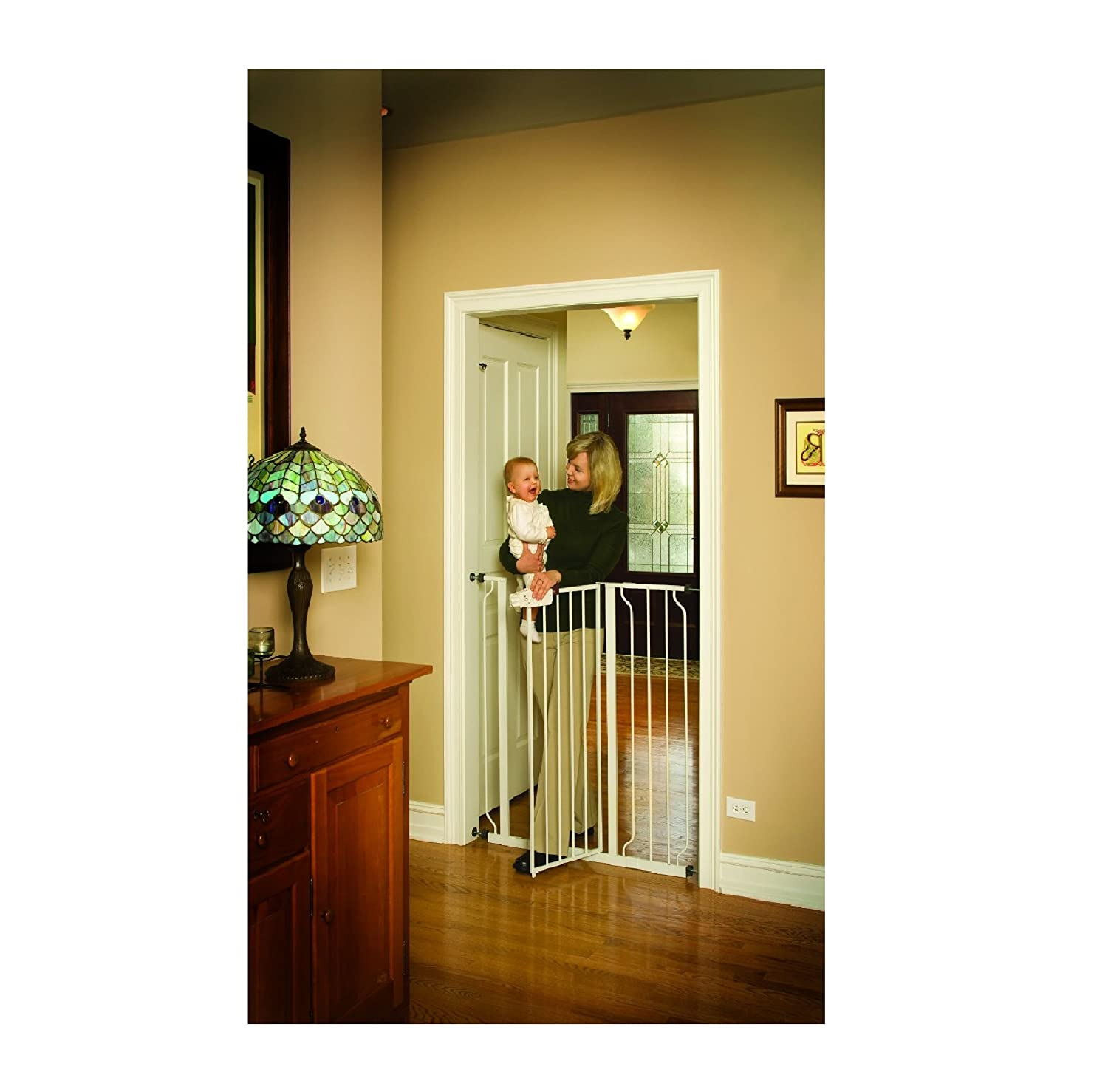 dog doors gates u0026 ramps amazon com