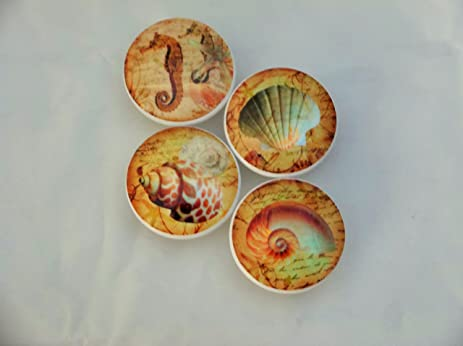 Set Of 4 Nautilus Seashell Oversized Cabinet Knobs (Tan)