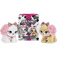 Spin Master Present Pets - Fancy 6051197, Meerkleurig