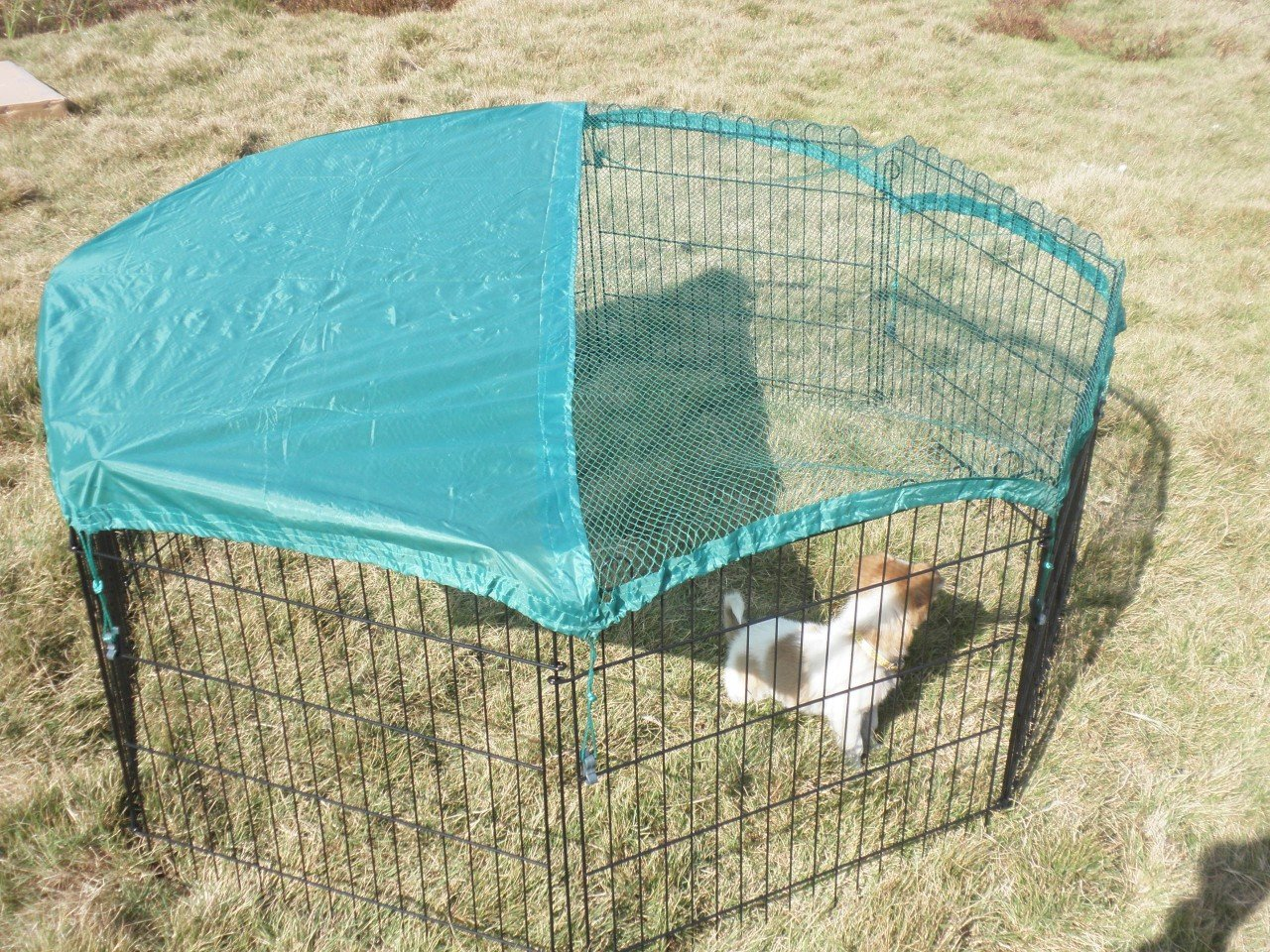 (VivaPet) Large RABBIT CAGE, DUCK GUINEA DOG PLAYPEN PEN ENCLOSURE RUN, With Safety Net, Silver Galvanized
