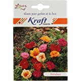 Portulaca Sundial Flower Seeds by Kraft Seeds