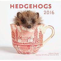 Hedgehogs 2016 Mini: 16-Month Calendar September 2015 through December 2016