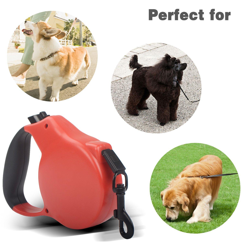 Greatever-Correa para Perros Resistente y Duradero Extensible Hasta 5M de Libertad y Protección Mascotas ,Botón integral muy rápido fácil y Fuerte y ...