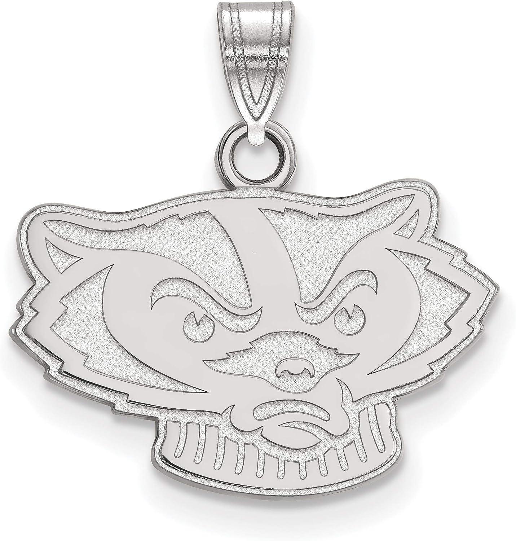 10k White Gold University of Wisconsin Badgers Bucky School Mascot Head Pendant 14x19mm