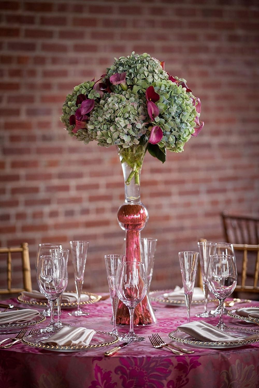 Amazon clear reversible jumbo trumpet vase height 30 open amazon clear reversible jumbo trumpet vase height 30 open 75 4 pack garden outdoor reviewsmspy