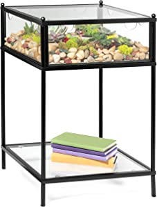 Deco Square Terrarium Display End Table with Reinforced Glass in Black Iron- 18