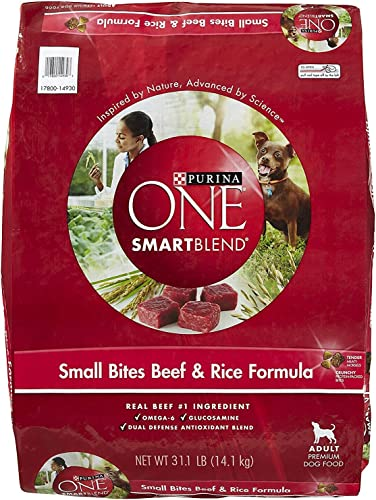 Purina ONE Adult Small Bites Beef Rice Formula Dry Dog Food