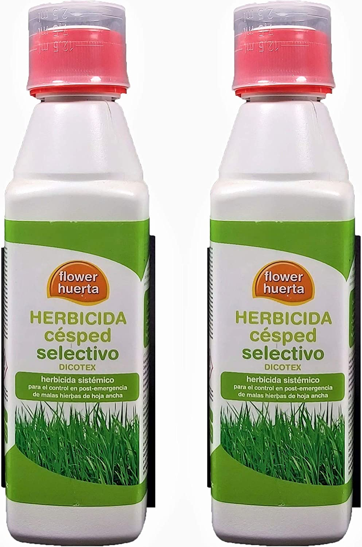 Herbicida Dicotex para cesped Hoja Ancha. Pack 2 Unidades (100 litros de Agua). Acción foliar contra Malas Hierbas ya Nacidas: Amazon.es: Jardín