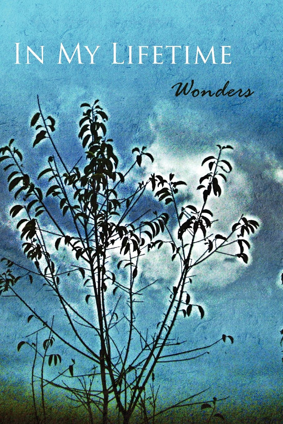 In My Lifetime: Wonders pdf