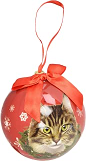 Amazon.com: Tabby Cat Christmas Ornament Shatter Proof Ball Easy To ...