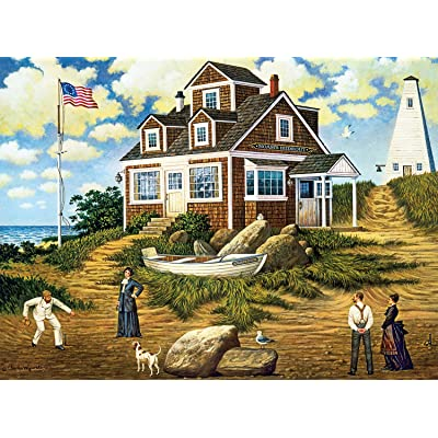 Buffalo Games - Charles Wysocki - A Delightful Day on Sparkhawk Island - 1000 Piece Jigsaw Puzzle, (Model: 11482): Toys & Games