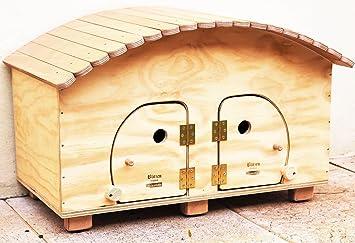 Novedad Blitzen, Camping Hotel WP Outdoor, Caseta profesional para gatos 2 Cómodas Plazas, Made in Italy 100%: Amazon.es: Jardín