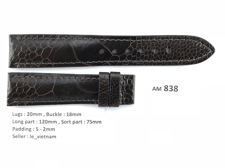 le_vietnam APPAREL メンズ US サイズ: 20mm / 18mm カラー: ブラウン  B078HWM45Z