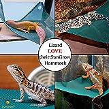 SunGrow Reptile Mesh Hammock Reduces Stress Level