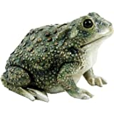 Texas Toad by Michael Carr Designs - Outdoor Toad Figurine for gardens, patios and lawns (80072)