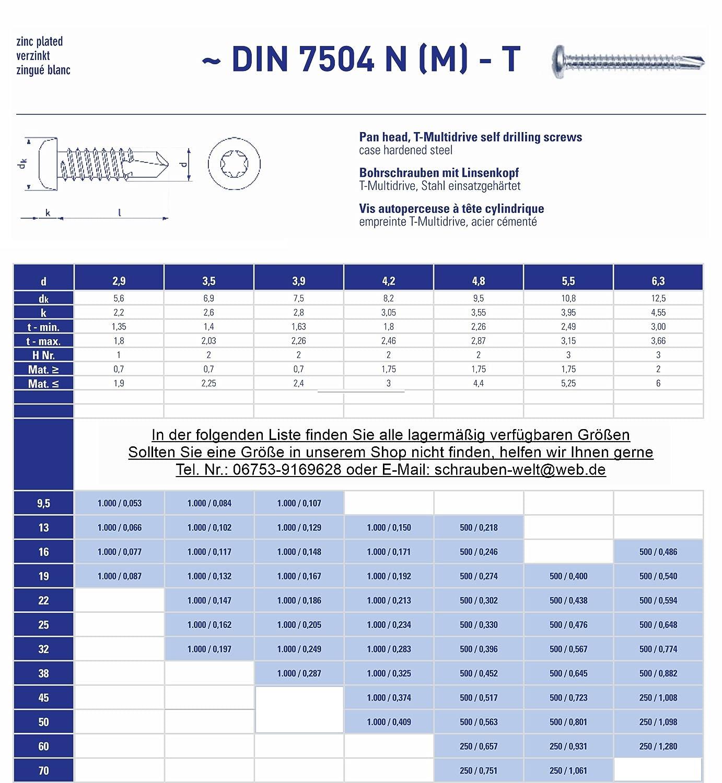 100 St/ück Bohrschrauben 5,5x19 mm verzinkt mit Linsenkopf selbstschneidend DIN 7504 N-T