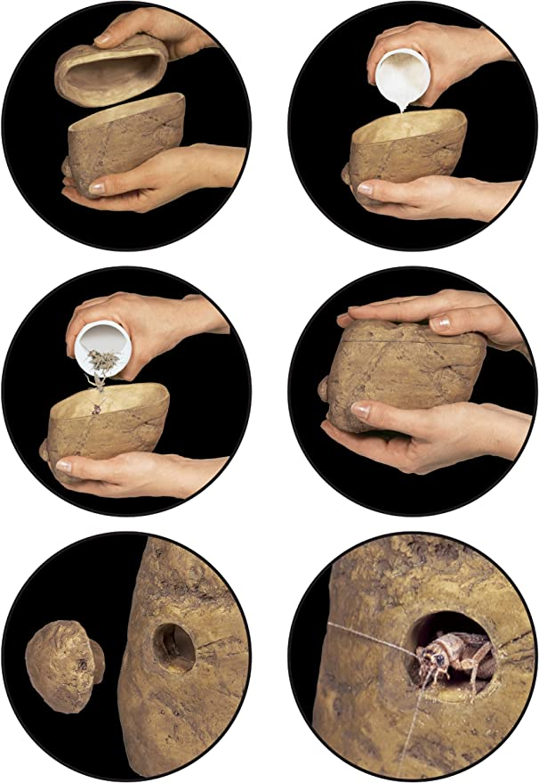 Exo terra Distributeur dInsecte Feeding Rock pour Reptiles et Amphibiens 12x10x4,5 cm Exoterra PT2821