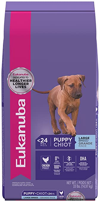 Eukanuba Puppy Food >> Amazon Com Eukanuba Puppy Large Breed Puppy Food 33 Pounds Pet