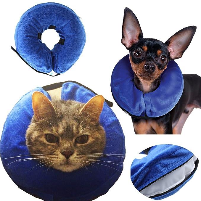 AnnaEye ProCollar - Collarín hinchable para perros y gatos, cómodo ...