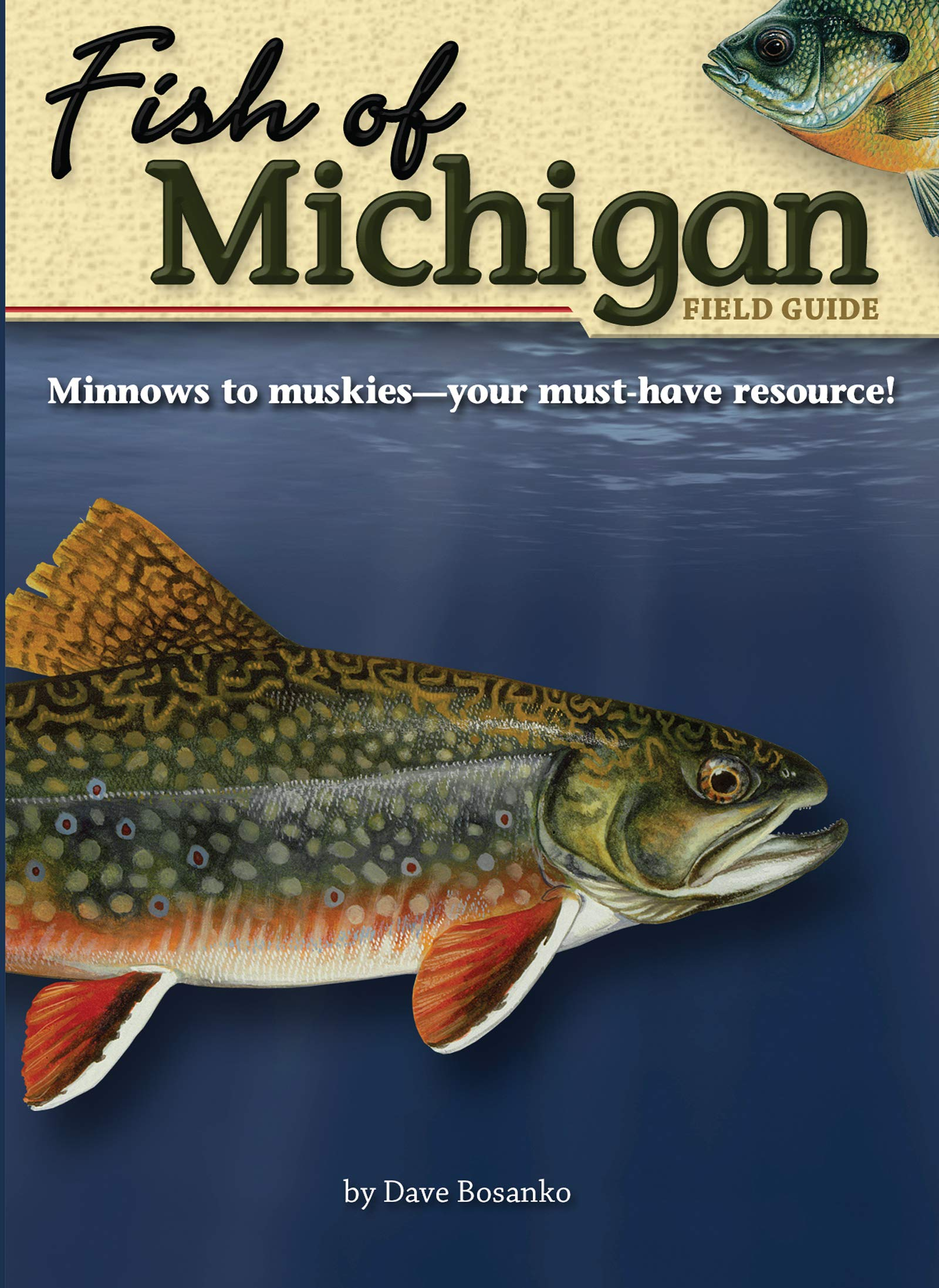 Download Fish of Michigan Field Guide (Fish Identification Guides) pdf