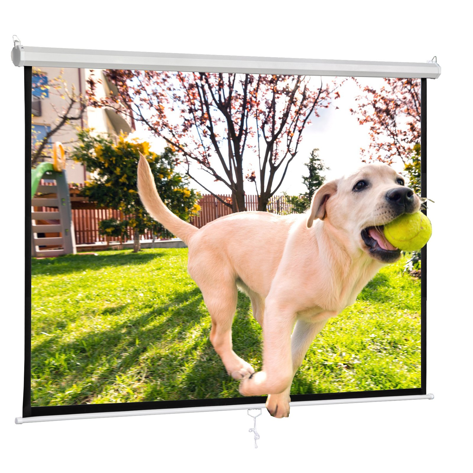 F2C Office Video Projector Projection Screen 119'' Diagonal 84''X 84'' 1:1 Format HD Display 160° Viewing Range Portable Manual Pull Down Screen Home Movie Theater Presentation Indoor Outdoor