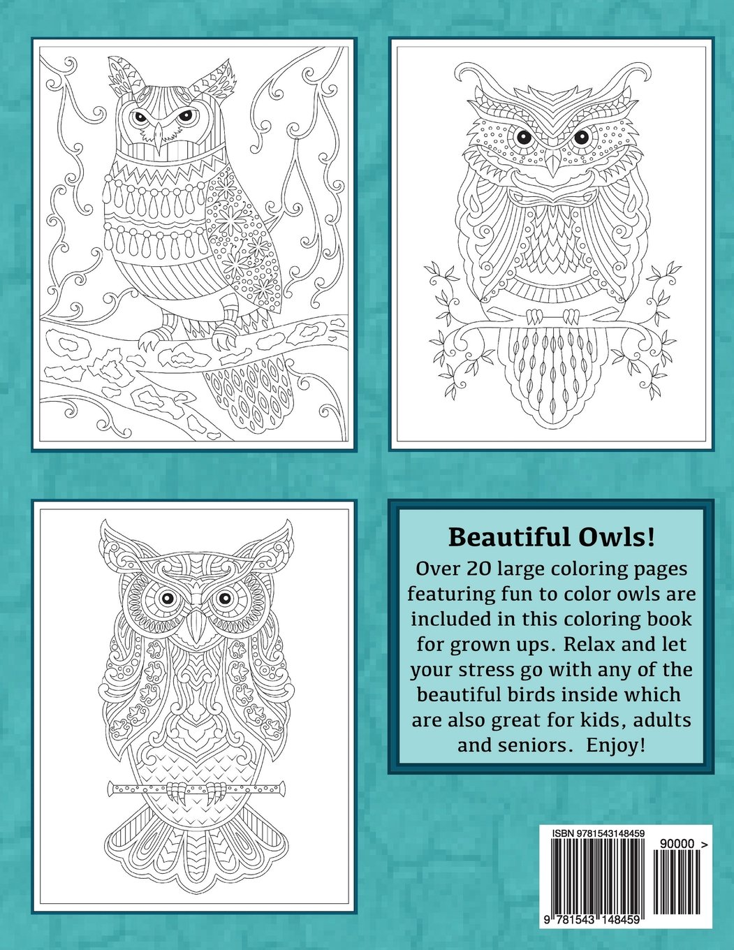 Large and lovely owl designs fun and simple adult coloring book creative and unique