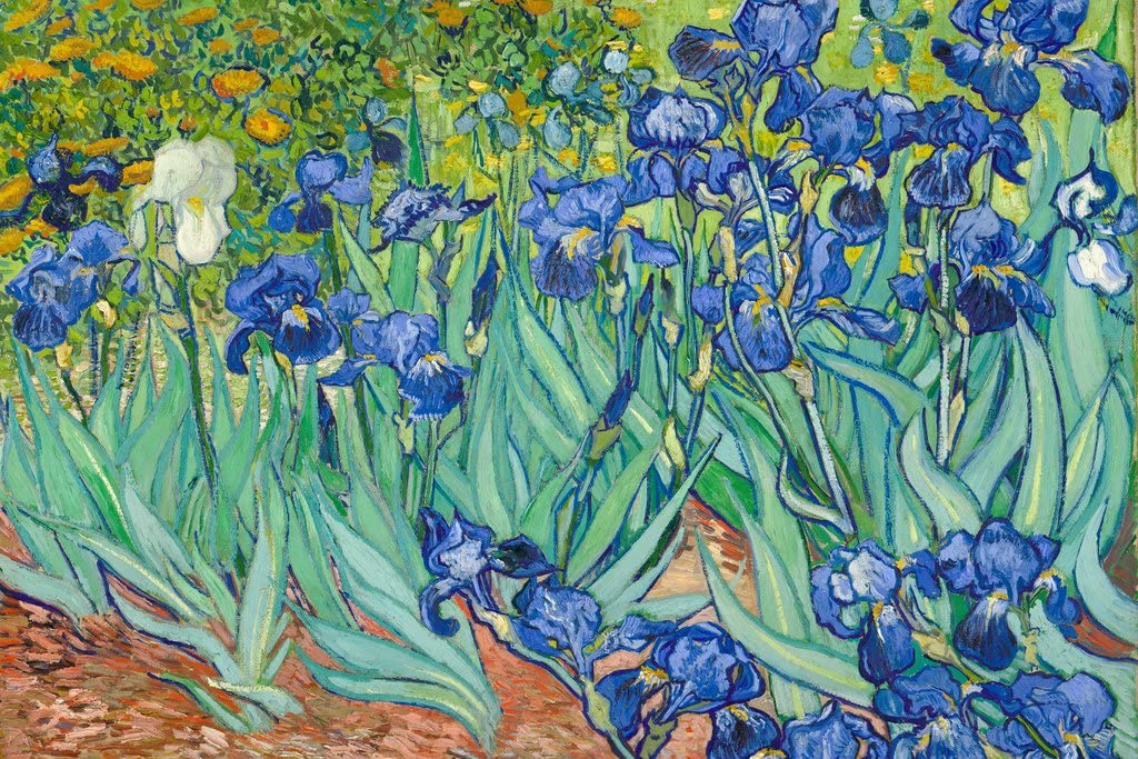 Vincent Van Gogh Irises 1890 Flowers Cool Wall Decor Art Print Poster 36x24