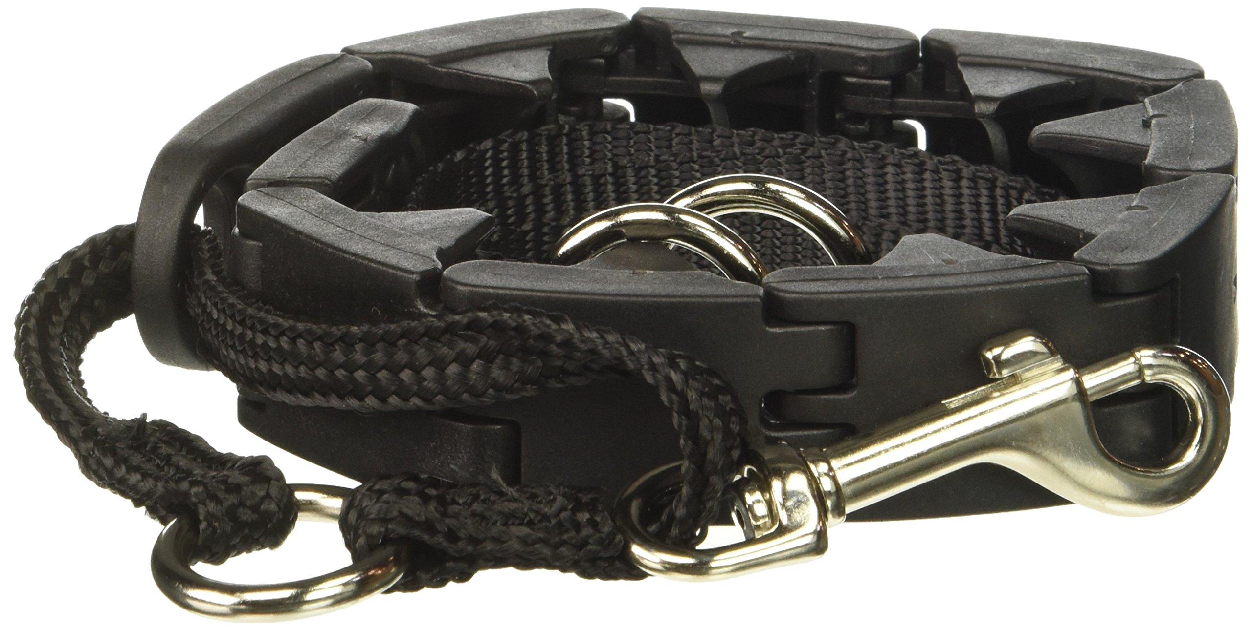 "Star Mark Pro-Training Dog Collar, Large - 21"""