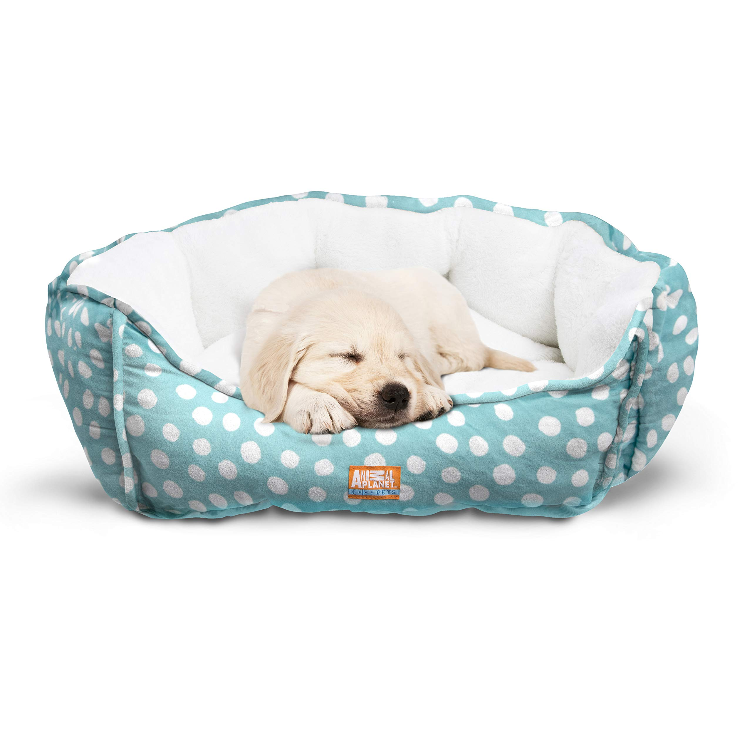 Animal Planet Round Plush Micro Suede & Sherpa Bolster Pet Bed for Dogs & Cats, Puppies, Small & Toy Breeds; Cuddly & Warm for Burrowing & Snuggling, Easy-to-Clean 24''X 17''X 9'' Aqua Polka Dot by Animal Planet