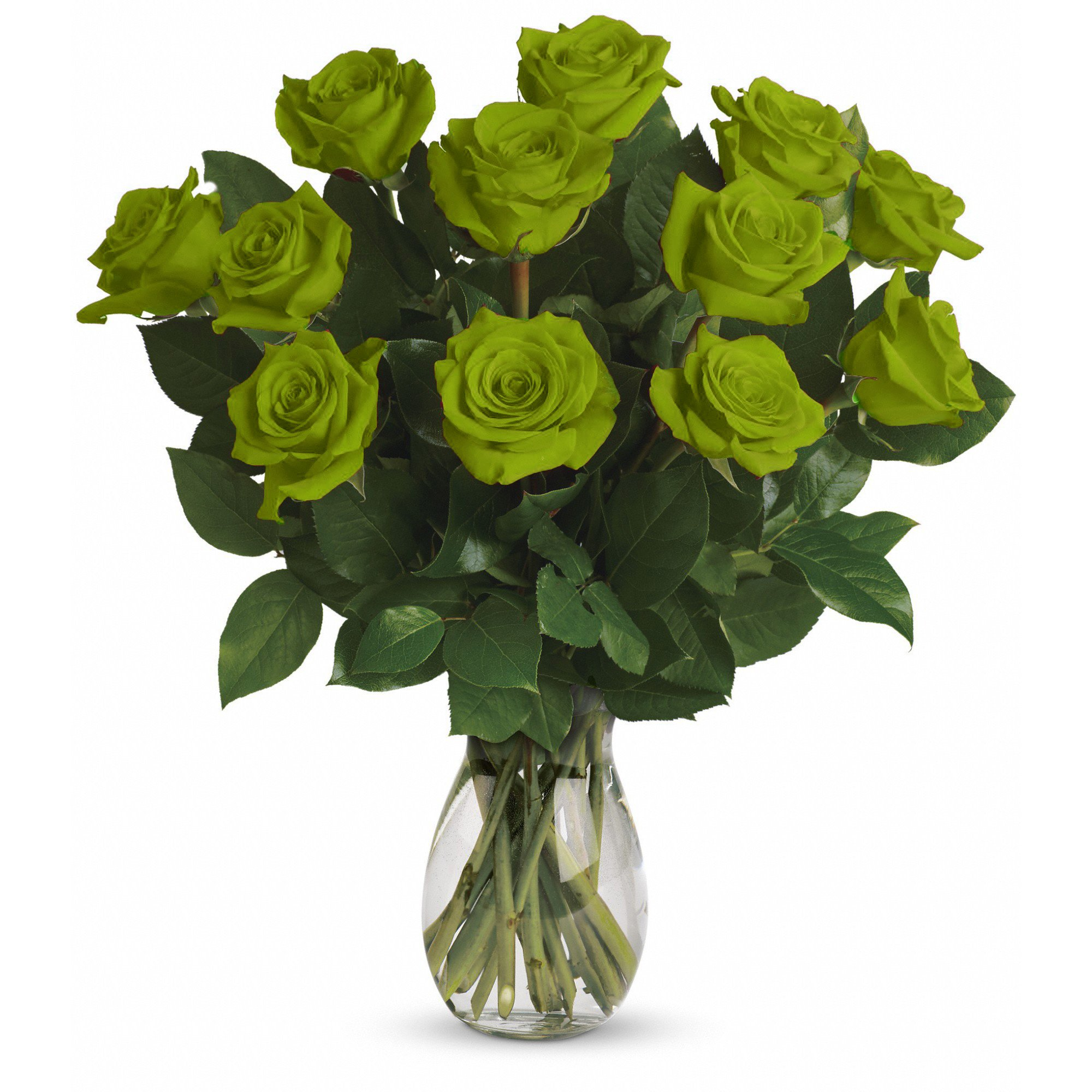 Farm Direct Rose Bouquet of 12 Fresh Cut Roses with Vase (Green)