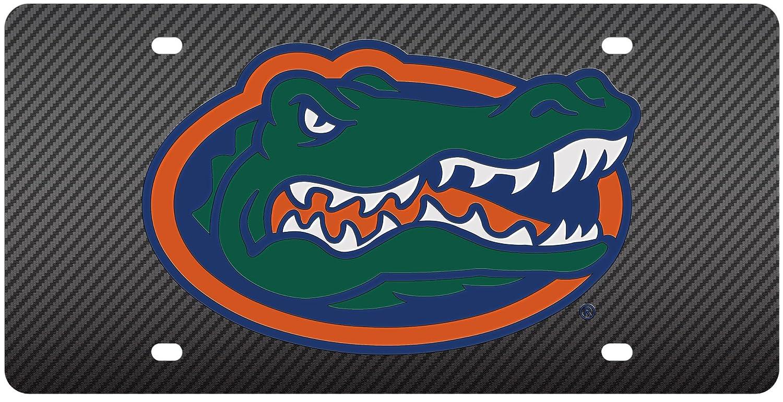 Amazon.com : Florida Gators Inlaid Acrylic License Plate with Carbon ...