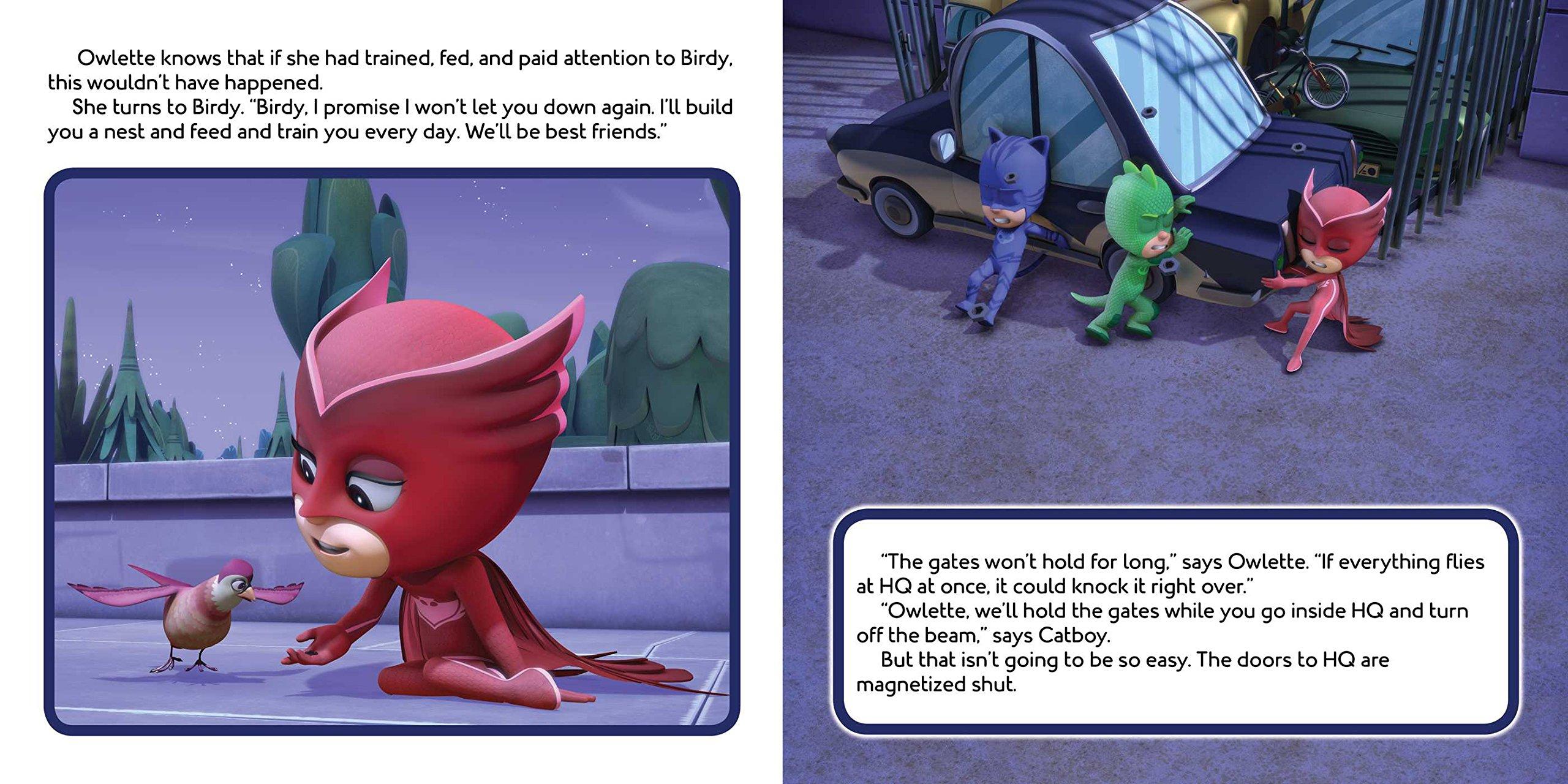 Owlette Gets a Pet (PJ Masks): Amazon.es: Maggie Testa: Libros en idiomas extranjeros