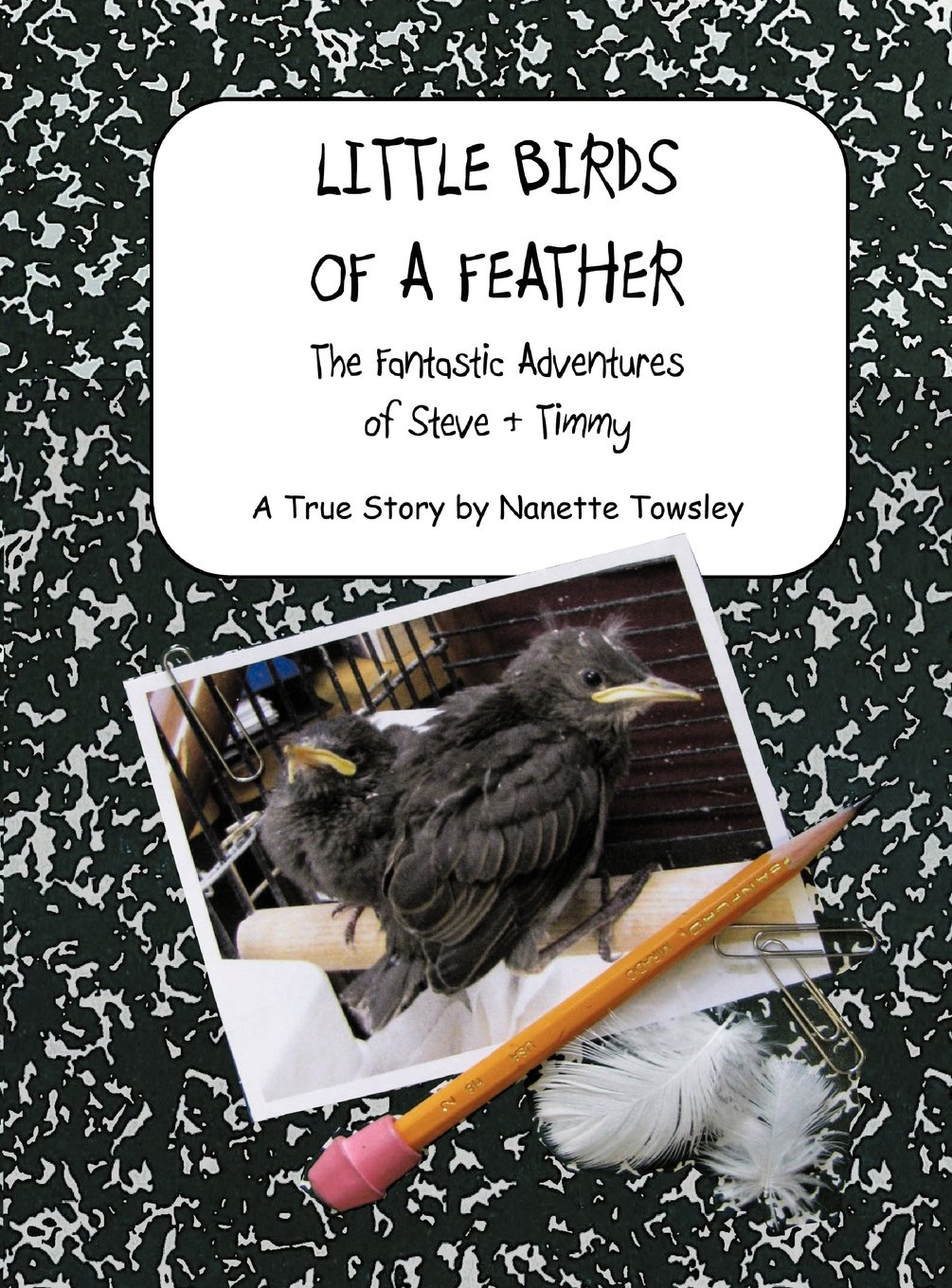 Download Little Birds of a Feather: The Fantastic Adventures of Steve & Timmy PDF