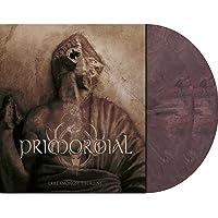 Exile Amongst The Ruins (Vinyl)