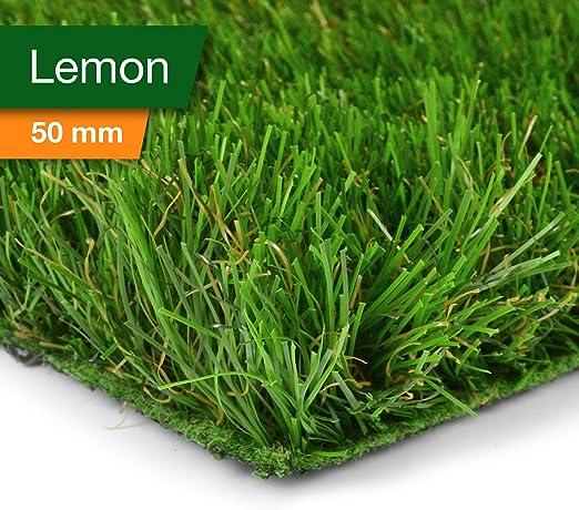 casa pura Césped Artificial Terraza - Alfombras de Césped | Hierba Artificial Premium | Pasto Sintético Permeable | Catálogo extenso (Lemon - 50mm, 100x100 cm): Amazon.es: Jardín