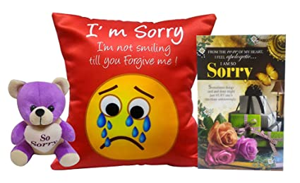 Saugat traders sorry gifts combo i am sorry greeting cards teddy saugat traders sorry gifts combo i am sorry greeting cards teddy bear and m4hsunfo
