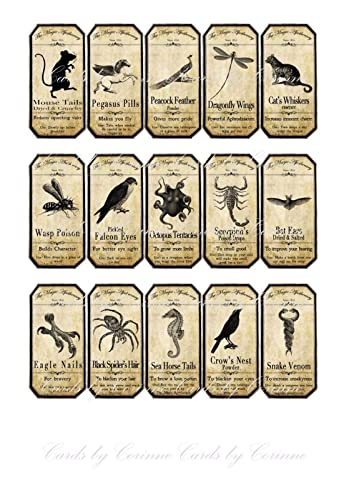 amazon com halloween 15 animal apothecary bottle labels stickers