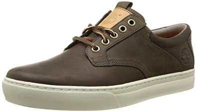 Timberland Ek Adventure 2.0 Cupsole Ftm Leather Oxford, Men's Trainer,  Brown (Marron (