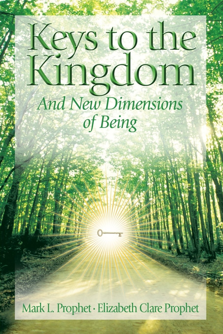 Download Keys to the Kingdom: And New Dimensions of Being PDF