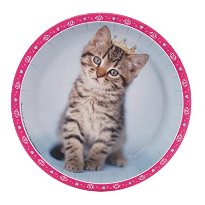 BirthdayExpress Rachael Hale Glamour Cats Party Supplies - Dinner Plates (8): Toys & Games