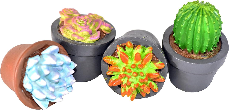 G & F Products 10062 Garden Miniature