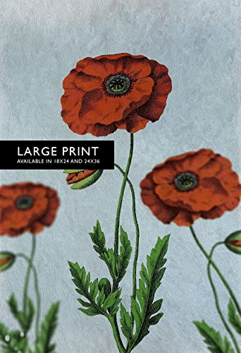 Ordinaire Poppy Decor Poppy Art Poppy Vintage Botanical Print Poppy Kitchen Decor  Poppy Print Poppy Wall Decor