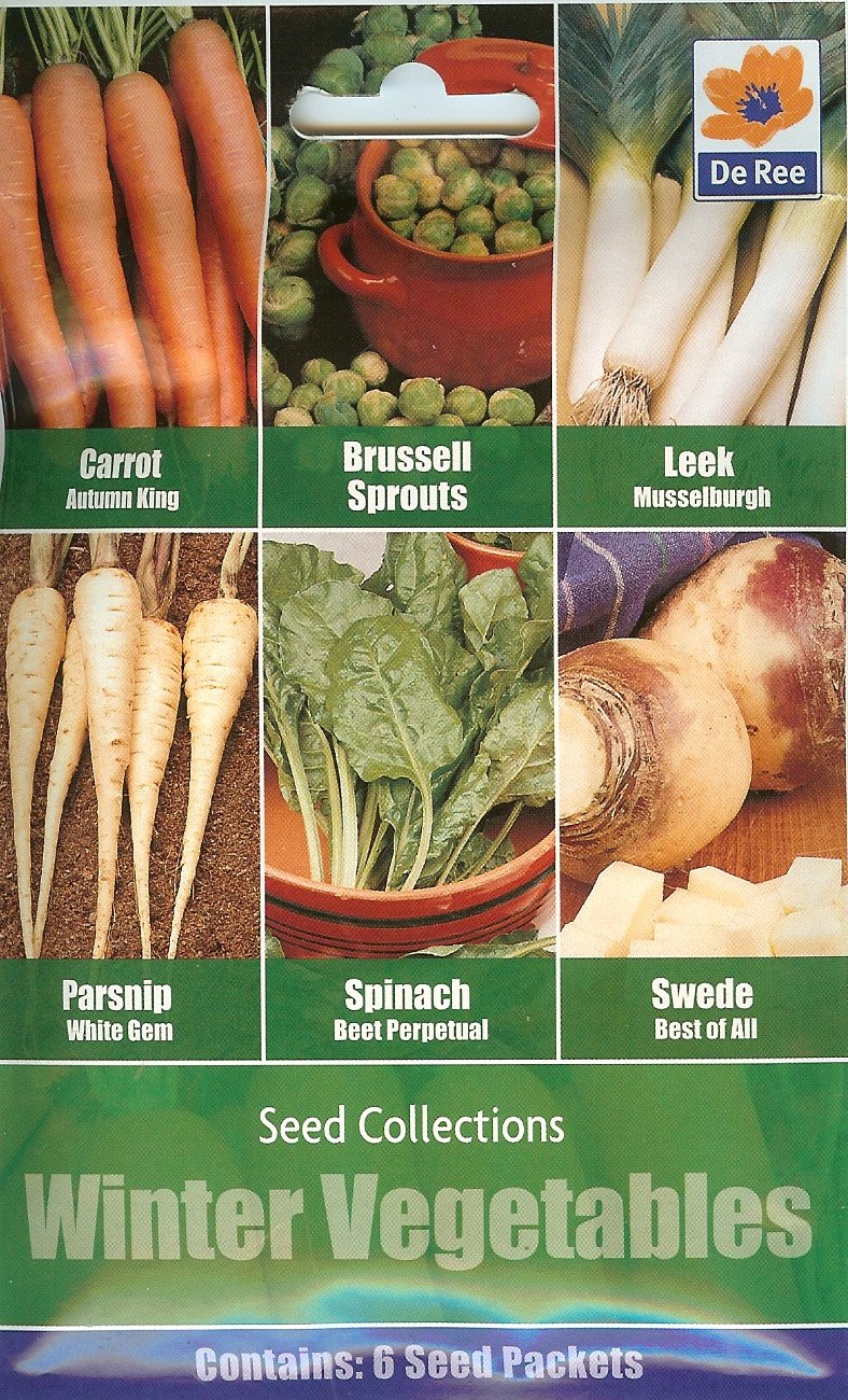 Winter Vegetables Seeds 6in1 Carrot Autumn King//Brussell Sprouts//Leek//Parsnip//Spinach//Swede//Allotment 12//2020