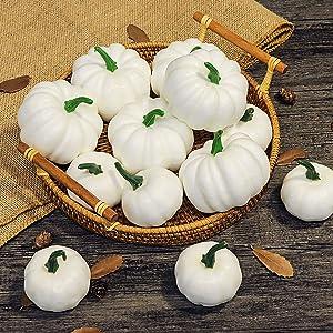 Ivenf Assorted Sizes White Artificial Pumpkins 12 Pcs, Fake Pumpkin for Thanksgiving Decorations, Pumpkin Decorations, Halloween Decorations, Fall Harvest Decors, Autumn Theme Party