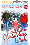 Caitlyn's Christmas Wish (Blue Ridge Valley Book 4)