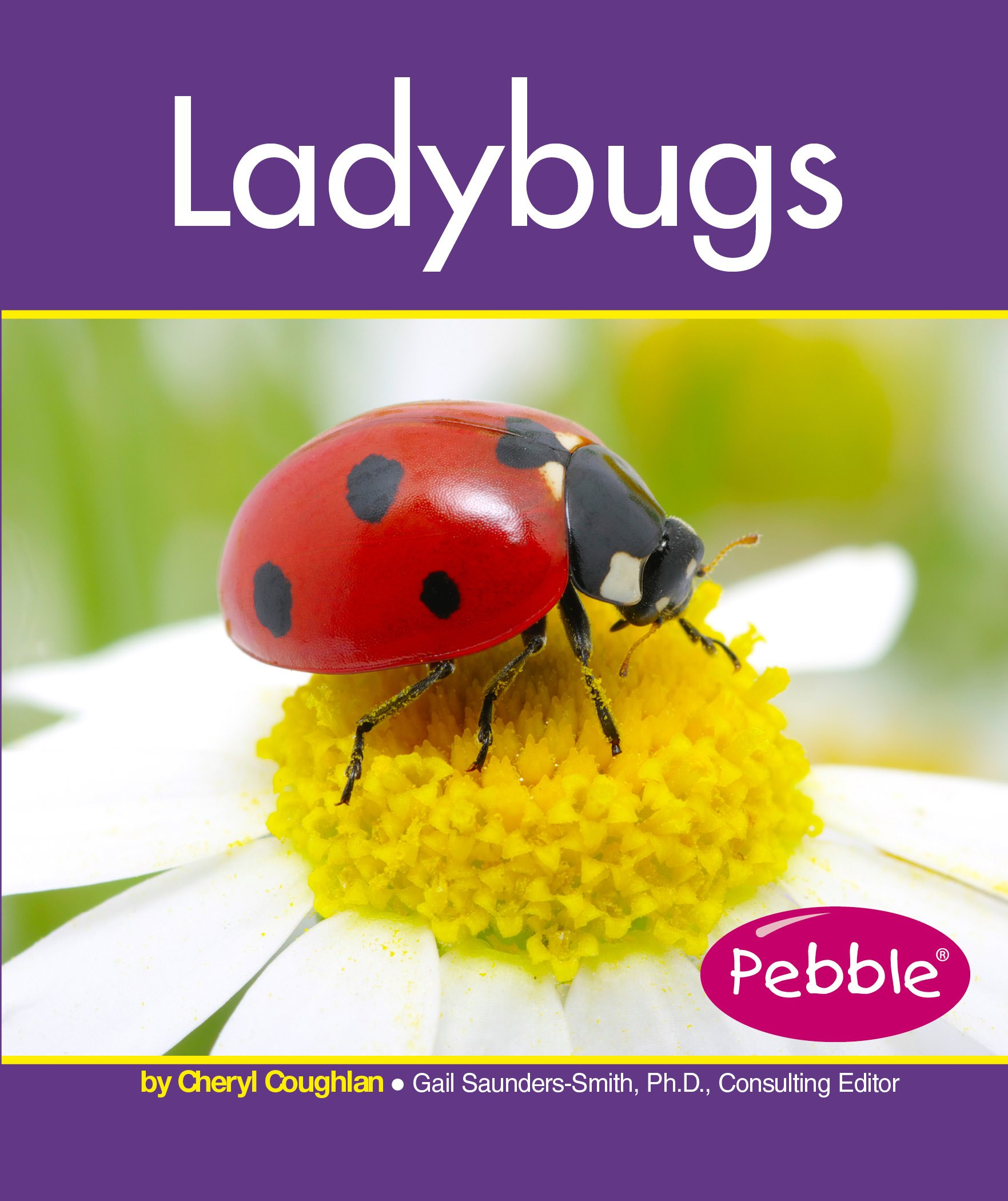ladybugs insects cheryl coughlan 9781515742272 amazon com books
